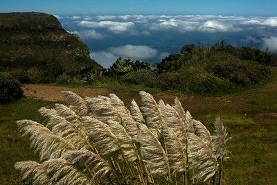 paisagem da natureza